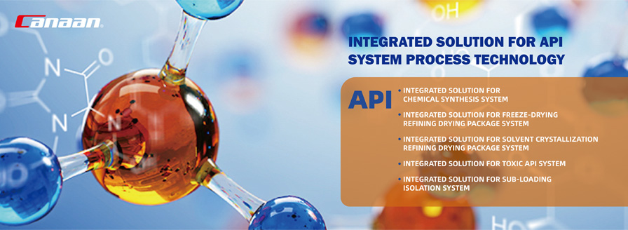Integrated solution for API system process technology